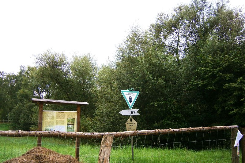 "NSG-Teichberg,Geschützter Landschaftsbestandteil ""Karower Teichberg"", Foto: Boonekamp"